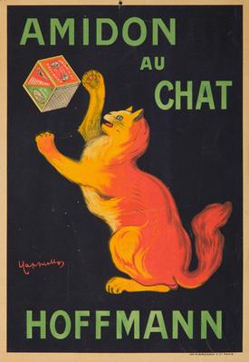 Hoffmann / Amidon au Chat