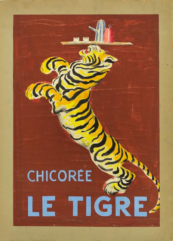 Chicorée Le Tigre